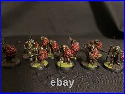 Age of Sigmar Dominion Kruleboyz painted Tabletop ready